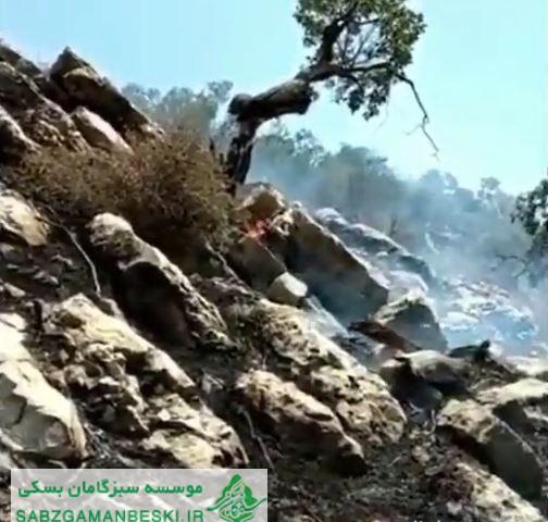 بیانیه موسسه سبزگامان بسکی درخصوص جولان شعله های آتش بر پیکره جنگل های ایران